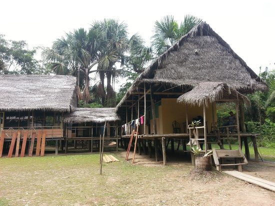 Ecological Jungle Trips: Eingang zur Lodge