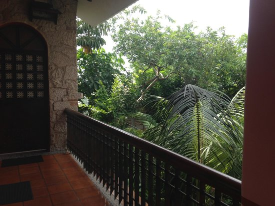 Casa de Las Flores: view from 2nd floor