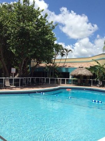 Universal Palms Hotel: Pool at the Universal Palms