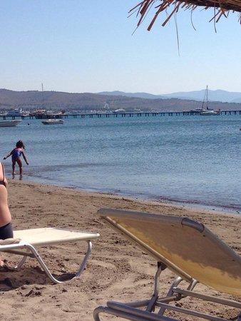 Cocos The Club: Spiaggia