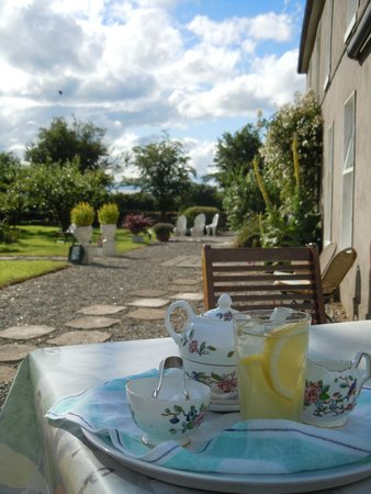 Kilcannon House Bed & Breakfast : Elderflower welcome in their lovely garden