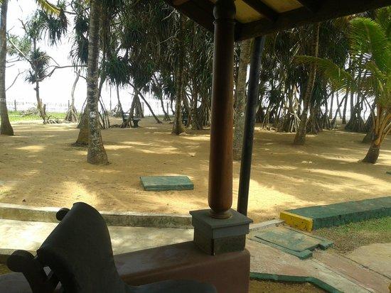 Siddhalepa Ayurveda Health Resort: De luxe Sea View - вид из номера