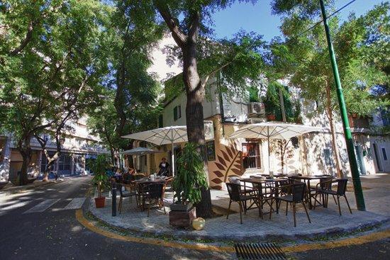 Palapa Restaurant & Bar