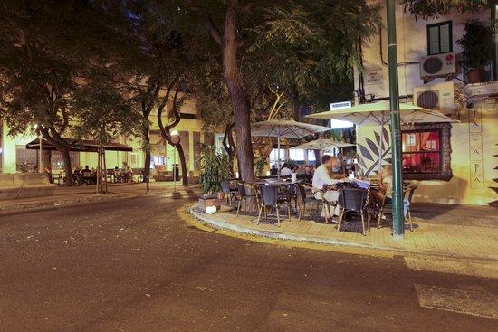 Palapa Restaurant & Bar : GOOD NIGNT MOON... PALAPA WHAT ELSE??