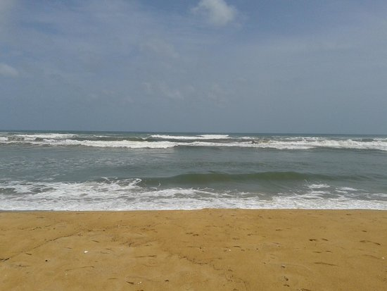 Siddhalepa Ayurveda Health Resort: пляж у отеля