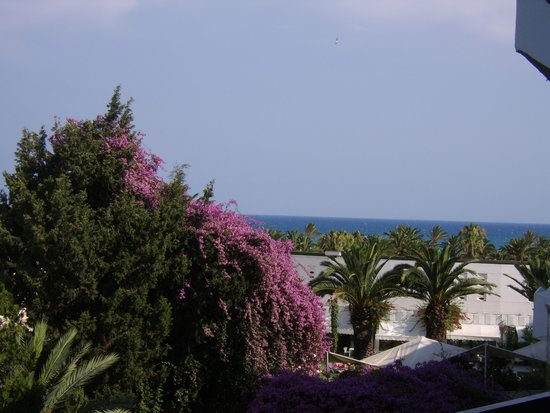 SENTIDO Phenicia: view from room