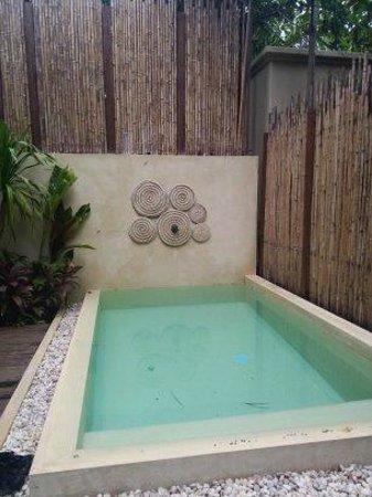 Anantara Rasananda Koh Phangan Villas : สระน้ำขนาดย่อมส่วนตัว