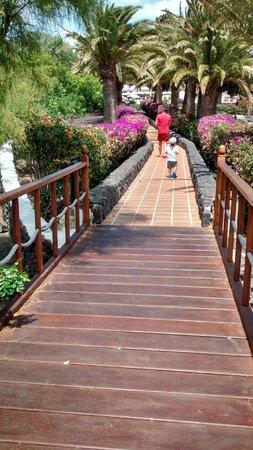 Relaxia Olivina : Les jardins de l'hôtel