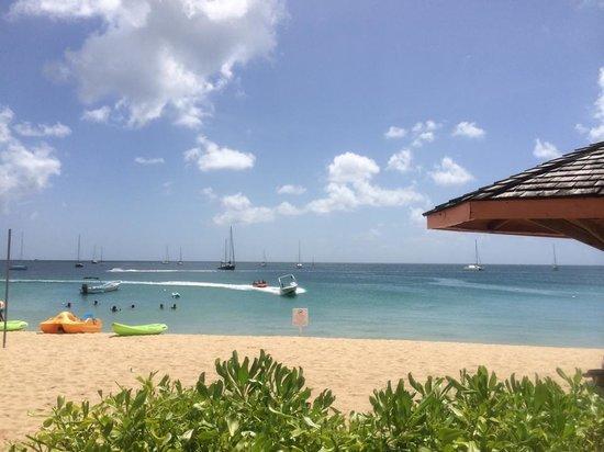 Bay Gardens Beach Resort: View of the beach