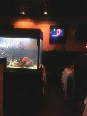 Caffe Concerto: The aquarium and a flat screen