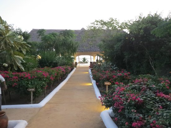 KonoKono Beach Resort: giardino