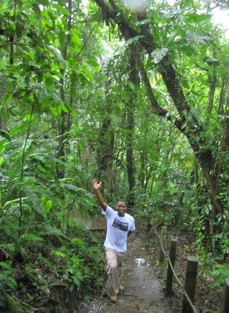 Get Lost In Costa Rica : Don--our fabulous tour guide
