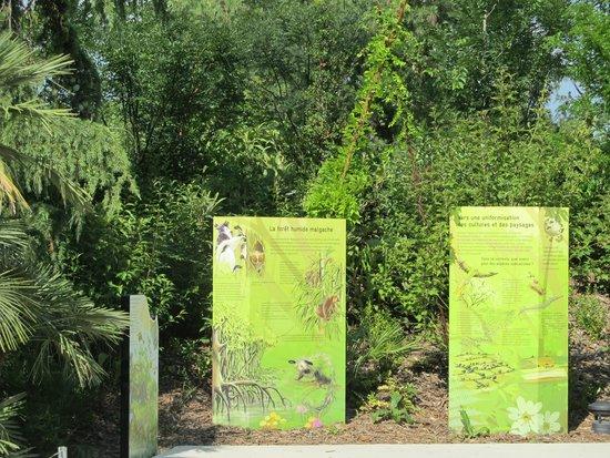 Parc Zoologique de Paris: le zoo