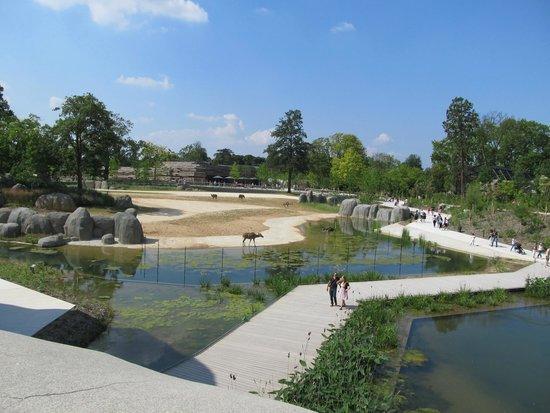 Parc Zoologique de Paris: une ballade