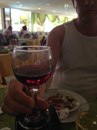 Sonas Alpina Hotel: грязный стакан