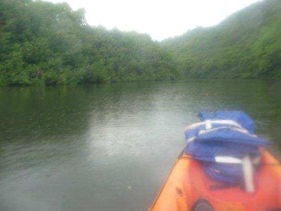 Wailua Kayak Adventures : Kayaking up the Wailua River