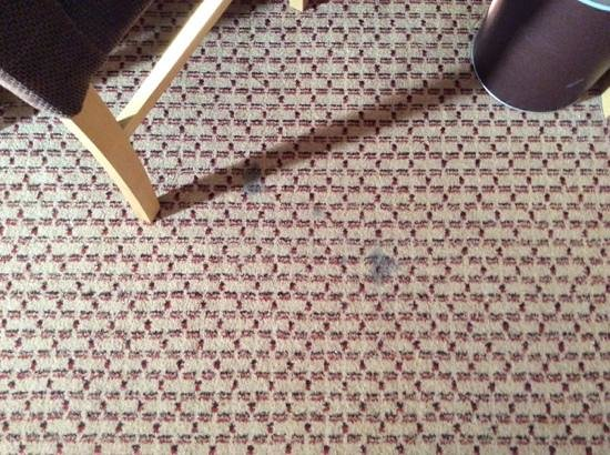 Village Hotel Bournemouth: grubby carpets
