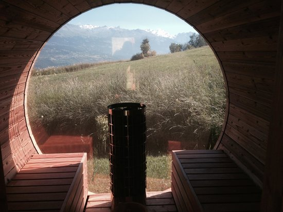 Maya Boutique Hotel : View from inside the barrel sauna
