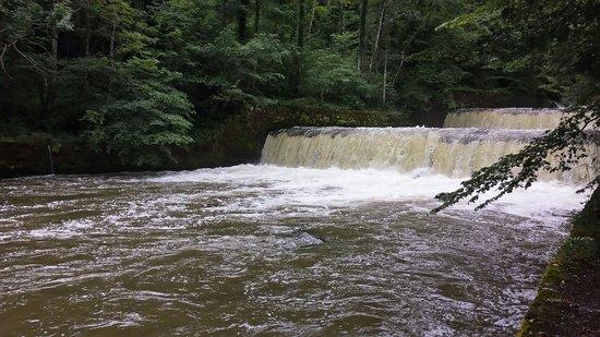 Gorges de l'Areuse : Les chutes en cascade
