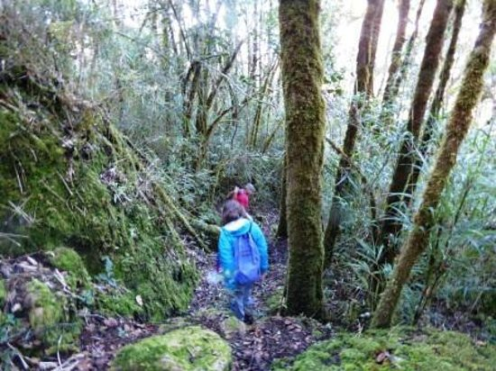 Quetzal Valley Cabins: Hiking