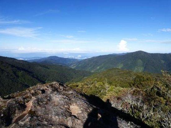 Quetzal Valley Cabins: San Gerardo de Dota