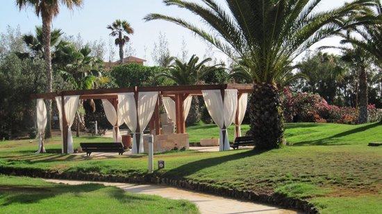 Hotel Elba Carlota: Binnentuin