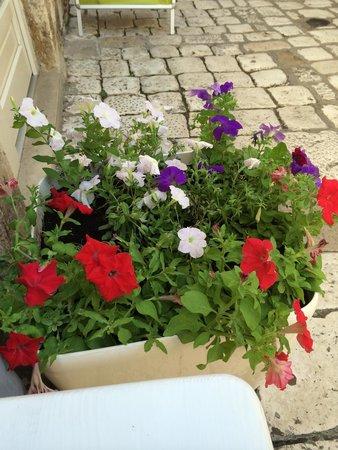 Nonica: Flower box