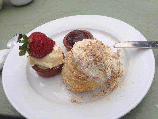 Olive's Garden: Beautiful cream tea
