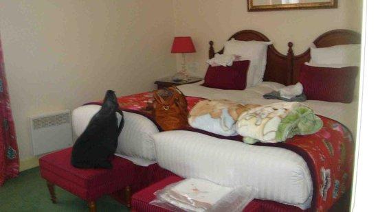 Marriott's Village d'lle-de-France: Guest Room