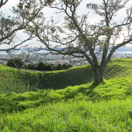 Coast-to-Coast Walkway : Volcanic crater with amazing view of the city
