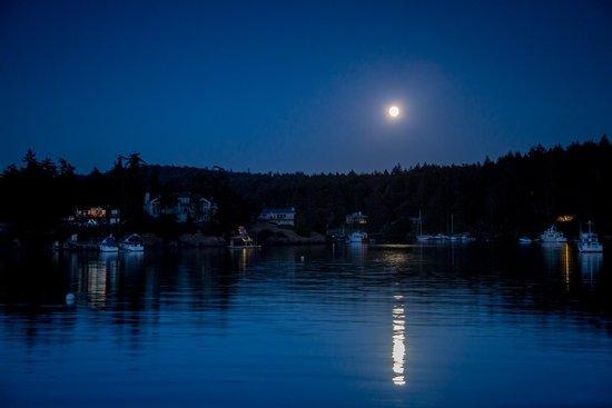 Snug Harbor Resort & Marina: View from the docks during full moon