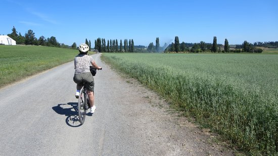 Cycle Treks - Day Tours: Trail through the fields