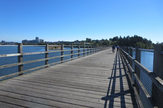 Cycle Treks - Day Tours: trail over the bridges