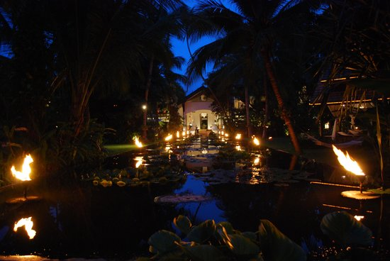 Anantara Bophut Koh Samui Resort: Lily pond at night