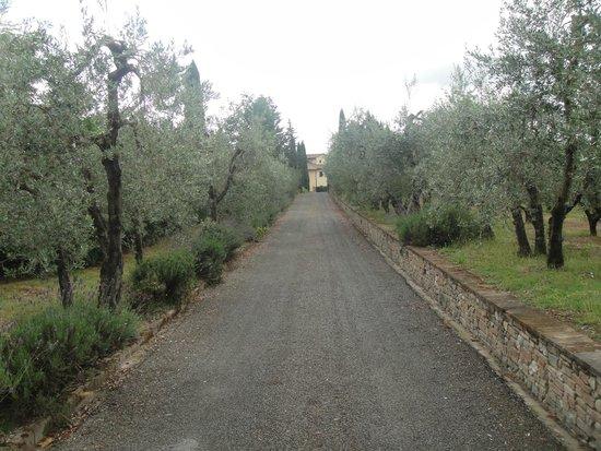 Villa Casa Di Monte: Driveway between owners house and villa