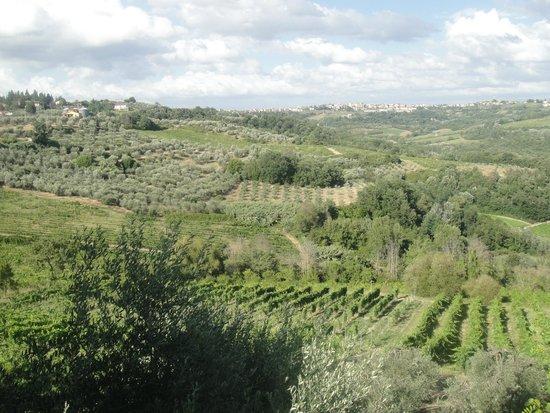 Villa Casa Di Monte: View from the villa's garden 1
