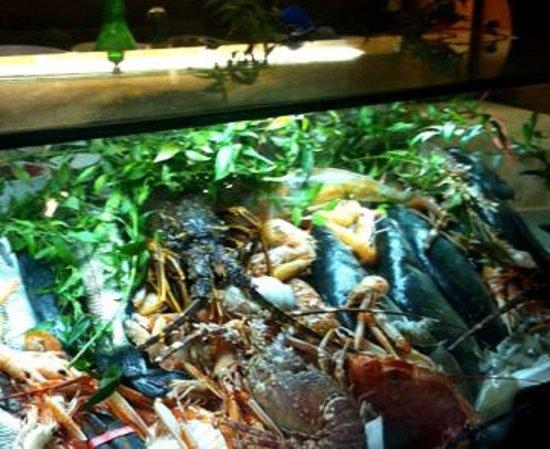 La Risacca 2: Fresh Seafood display as you enter.