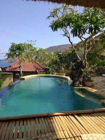 Paradise Bungalows Bali : бассейн на территории отеля