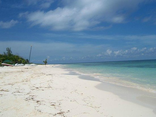 Beachouse Dive Hostel Cozumel: BEACH