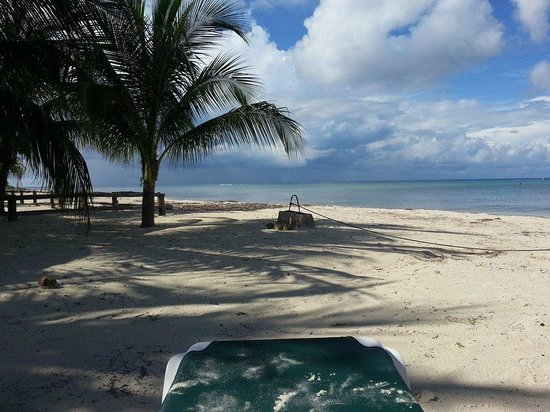 Beachouse Dive Hostel Cozumel: JUST A FEW STEPS TO THE BEST BEACH