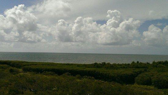 Ocean Pointe Suites at Key Largo: View of Atlantic from Ocean Pointe Suites.