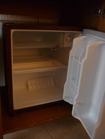 Hotel Son Baulo: Small, old and quite noisey fridge, does the job though