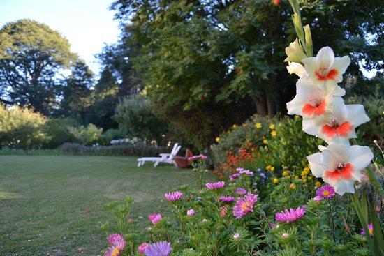 Hosteria Katy: Parque en verano