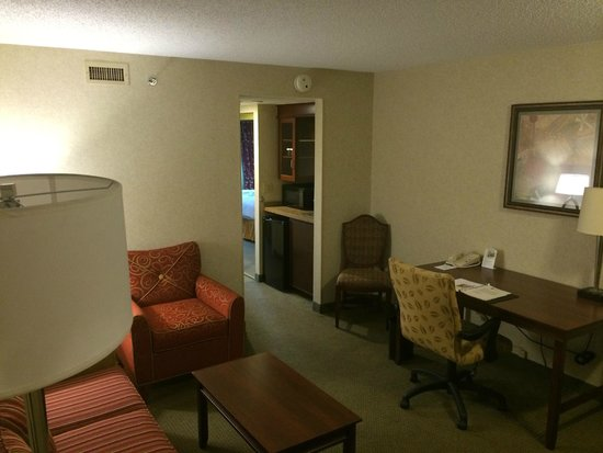 Embassy Suites by Hilton Detroit - Troy/Auburn Hills : View from the door
