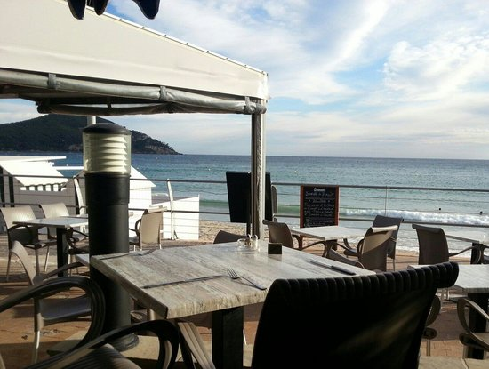 l 39 equateur saint cyr sur mer restaurant bewertungen telefonnummer fotos tripadvisor. Black Bedroom Furniture Sets. Home Design Ideas