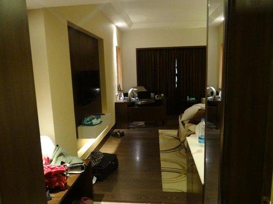 Radisson Blu Agra Taj East Gate: Room Pic 2