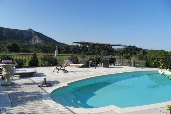 Mas La Renaissance : La piscine