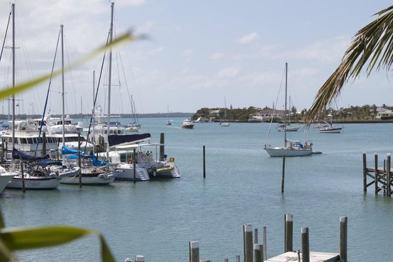 Great Guana Cay: View from Marsh Hourbour