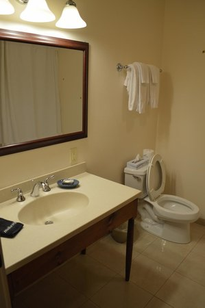 Lake Opechee Inn and Spa: Bathroom
