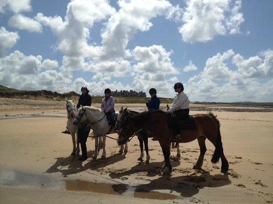 Trump International Golf Links & Hotel: Horseback ride on the beach
